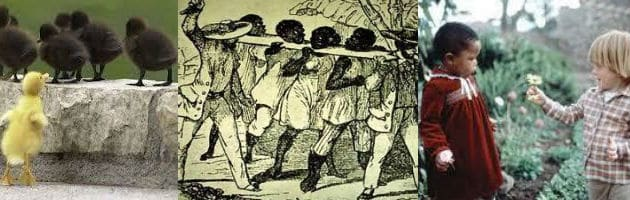 Manifiesto contra la discriminación racial