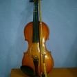 6 violines voluntarios: 1