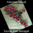 Violín de Rosas