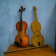 6 violines voluntarios: 6